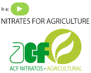 nitrates for agriculture